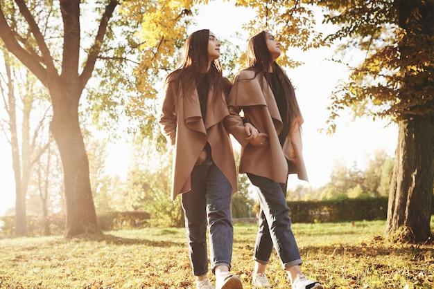 Вид профиля молодых красивых брюнеток-близнецов, идущих с руками в карманах рядом друг с другом и вместе смотрящих в сторону в осеннем солнечном парке на размытом фоне.