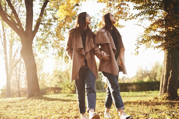 Profile view of young beautiful brunette twin girls walking with their hands in pockets close to each other and looking to a side together in autumn sunny park on blurry background.