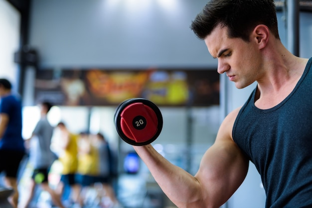Profile view of young handsome man exercising with dumbbells at the gym