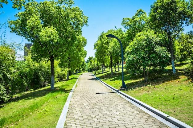 아름다운 도시 공원에서의 산책로