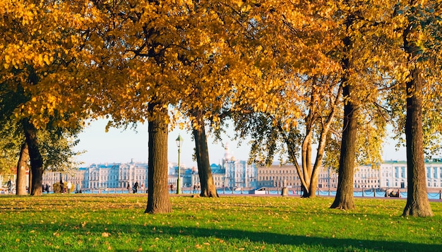 Promenade rabbit island, with views of the neva river autumn city skyline.