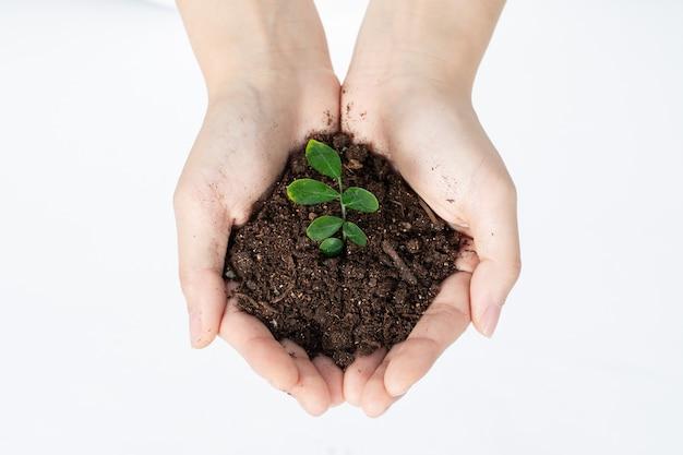 Защита природных ресурсов для защиты окружающей среды