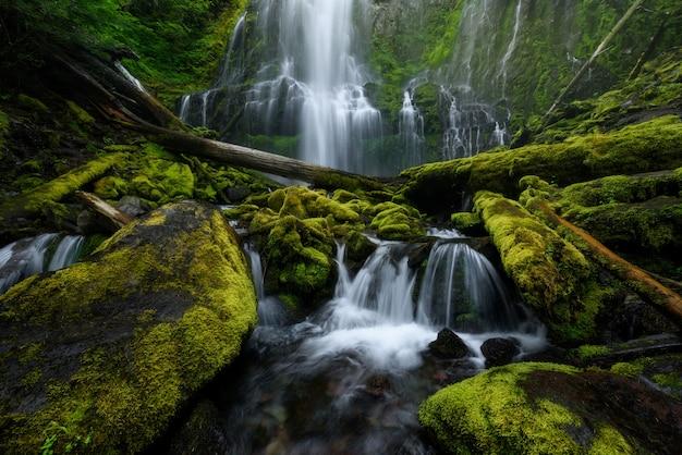 夏の間、米国オレゴン州のproxy falls