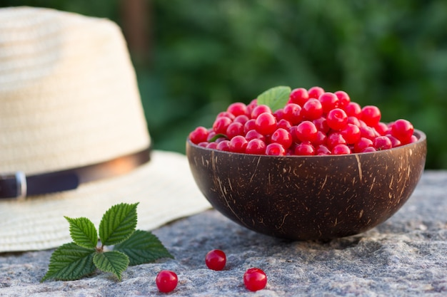 Prunus tomentosa or nanking cherry harvest in a cocnut bowl on a stone outdoors in summer