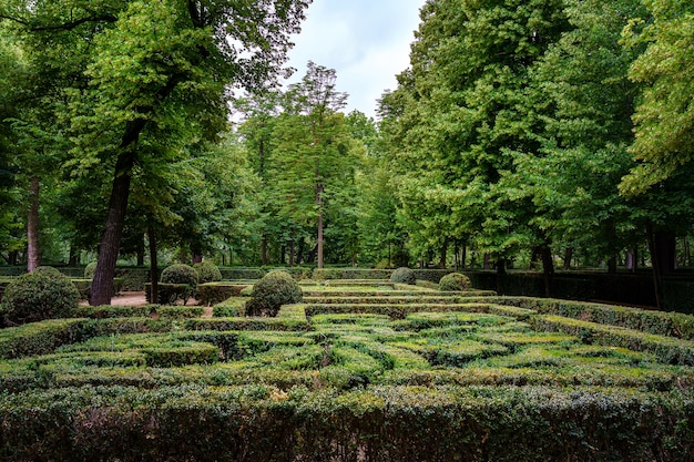 울타리가 잘린 덤불의 미로를 만드는 공중 정원