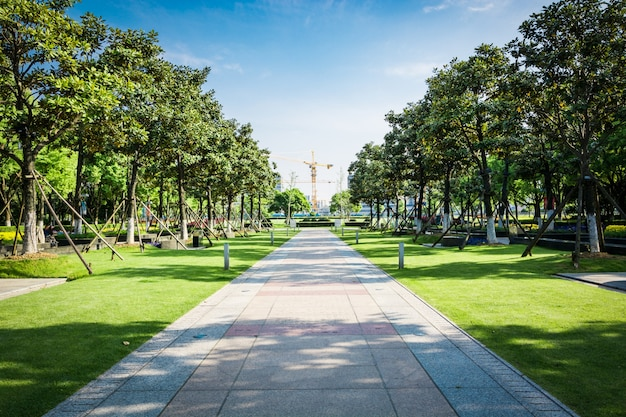 Piazza pubblica con pavimento vuoto in centro