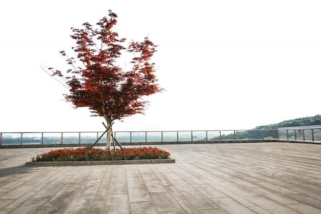 시내에서 빈도 바닥과 공공 광장