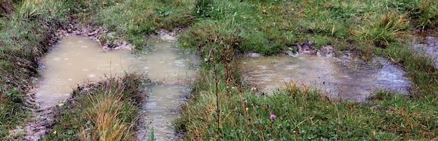 芝生の道で雨の間に水たまり