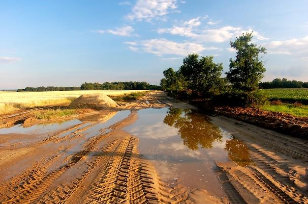 牧草地における水の水たまり