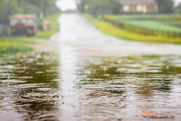 샤워하는 동안 도로에 물을 웅덩이. 여름날 강한 비