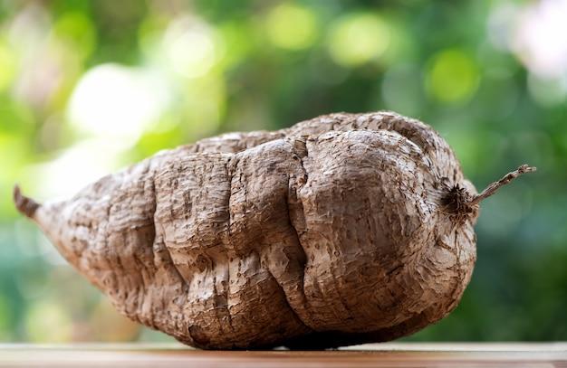 プエラリアミリフィカまたは白いクワクルアの自然の果実。