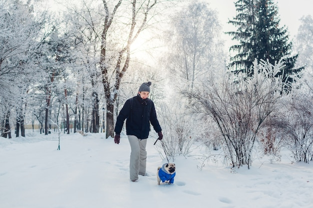 Pug dog walking on snow with man in park. puppy wearing winter coat outdoors