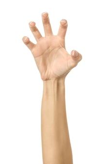 당기기, 잡기, 닿기 또는 긁기. 여자 손 몸짓에 고립 된 화이트