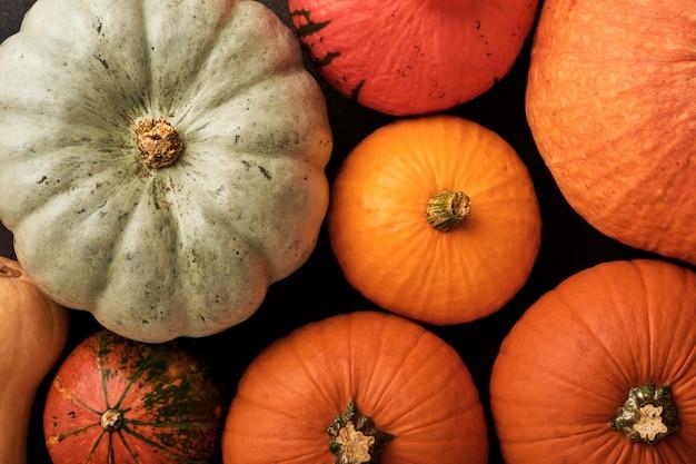 호박. 건장한 소박한 배경에 계피, 견과류, 계절 향신료와 함께 가을 음식 배경. 추수감사절과 가을 방학을 위해 호박이나 사과 파이와 쿠키를 요리하세요. 상위 뷰 복사 공간입니다.