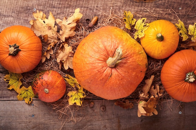Pumpkin. autumn food background with cinnamon, nuts and seasonal spices on rustic background. cooking pumpkin or apple pie and cookies for thanksgiving and autumn holidays. top view with copy space.