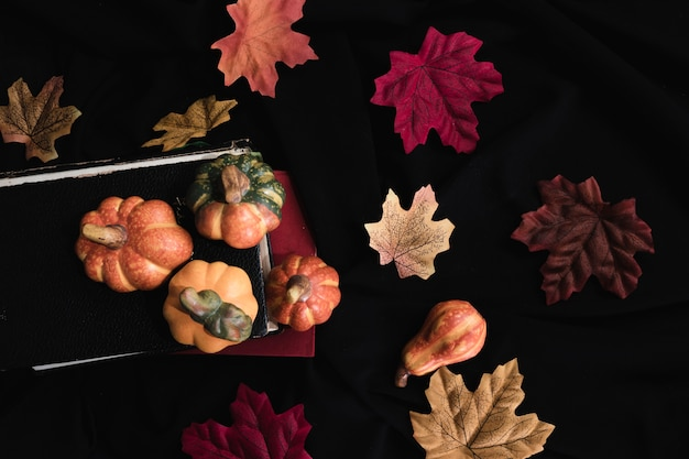Pumpkin and autumn leaves on black background