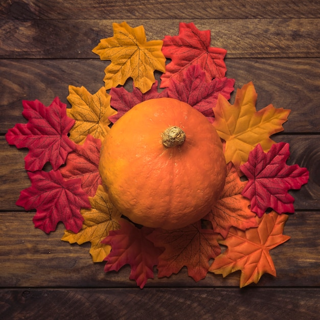 Pumpkin on autumn leaves