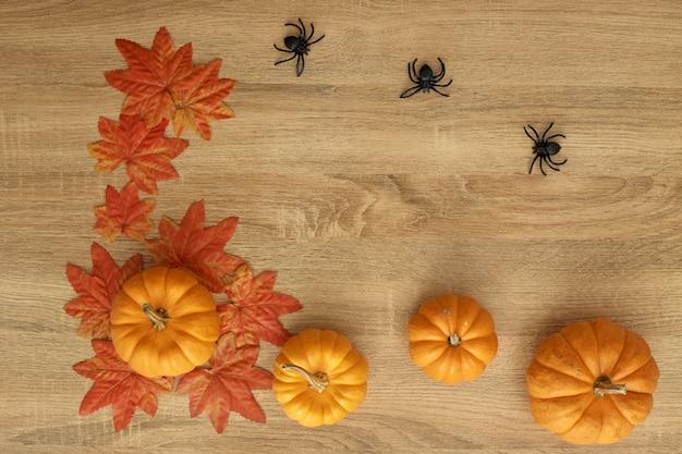 Pumpkin autumn thanksgiving background