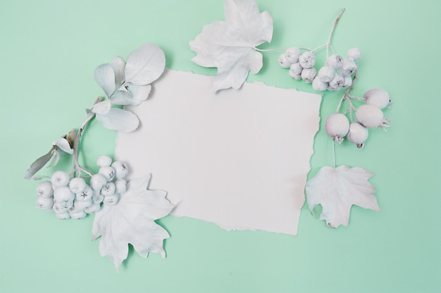 Pumpkin, berries and leaves with white frame on a green pastel surface