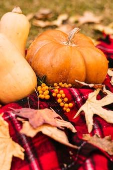 Pumpkin on blanket in fall season