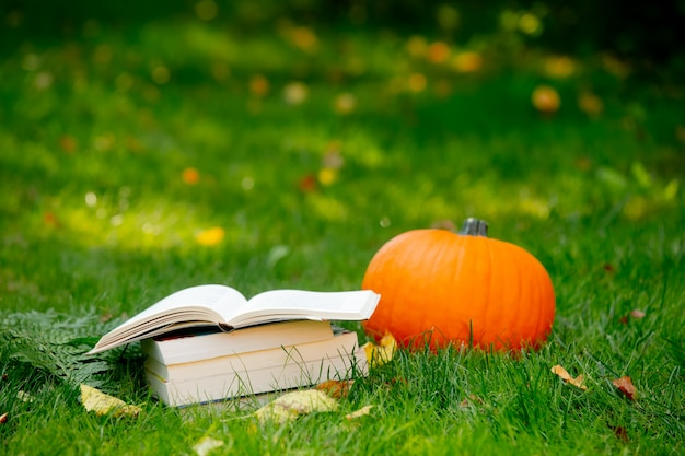 Pumpkin and books are on a green grass in a garden