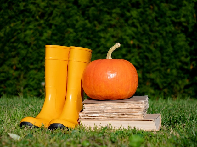Pumpkin and books with  rubber boots