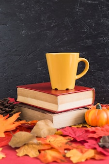 Pumpkin and conifer cone near books and mug