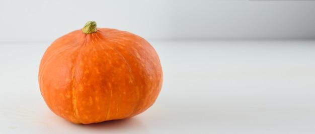Pumpkin on grey background