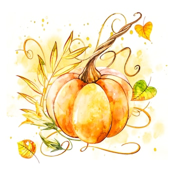 Pumpkin. hand drawn watercolor painting on white . watercolor illustration with a splash.