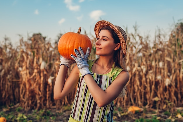 Pumpkin harvest. young woman farmer picking autumn crop of pumpkins on farm. agriculture. thanksgiving and halloween