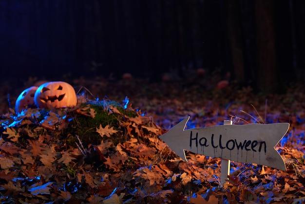 Pumpkin head on a pile of autumn leaves