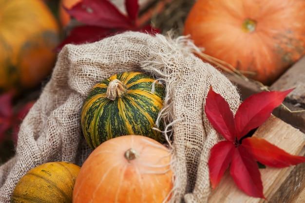 リネン袋のカボチャ。秋の時間