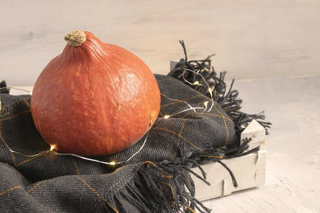 Pumpkin on knitted checkered plaid in white wooden box.