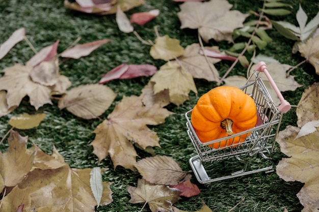 Pumpkin and leaf with sumermarket cart on green lawn