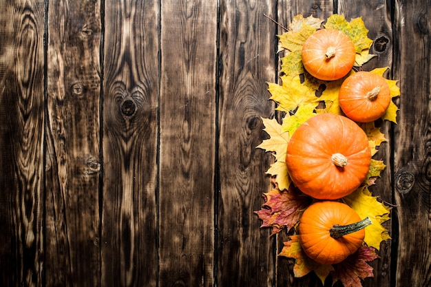 Pumpkin on maple leaves. on wooden background.