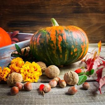 Pumpkin, marigolds and nuts