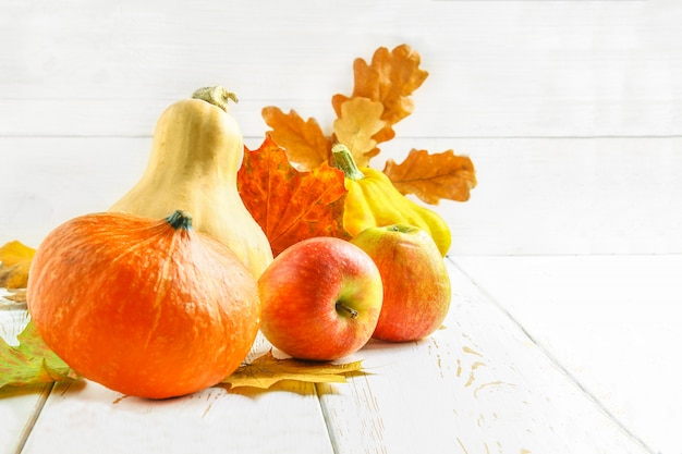 Pumpkin and patty pan, apples and maple, oak yellow leaves on a white wooden table.