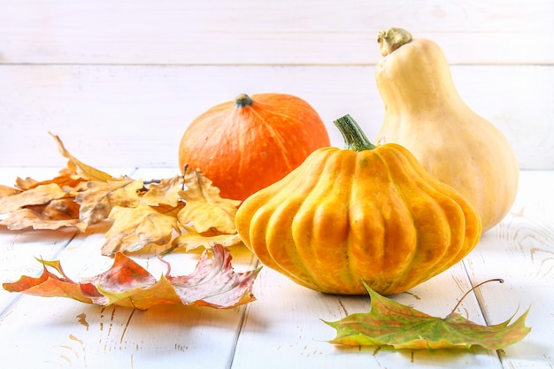 Pumpkin and patty pan and maple, oak yellow leaves on a white wooden table.