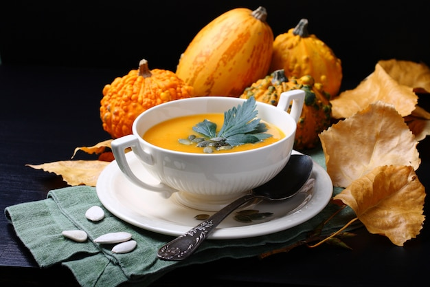 Pumpkin soup in white plate with fresh pumpkins on black