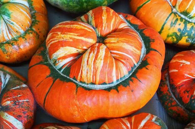 Pumpkin in vegetable shop