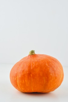 Pumpkin on a white background the halloween symbol pumpkin on a light background