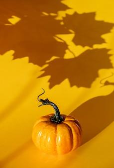カエデの葉からの影とカボチャ