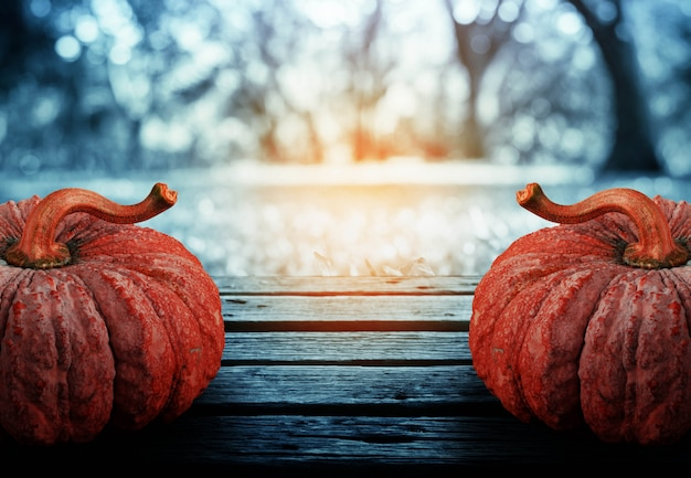 Pumpkin with darkness in park.