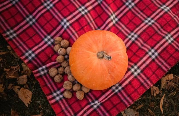 Тыква с орехами на плед. осенний натюрморт. пикник