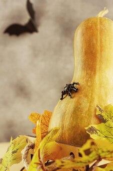 단풍에 거미와 호박, 백그라운드에서 박쥐. 할로윈 카드입니다.