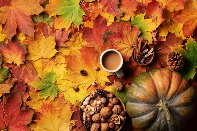 Pumpkin, wooden bowl of nuts, coffee cup, cone, cinnamon over beige plaid and colorful leaves background.