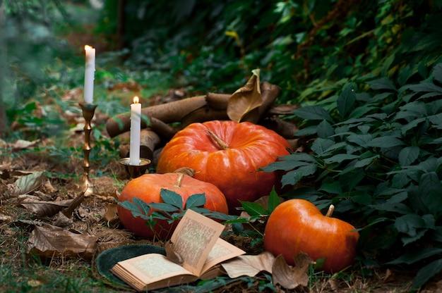 Тыквы и свечи в саду. идеи декора для хэллоуина. выборочный фокус.