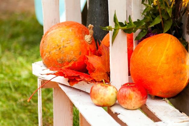 白い木箱の上に横たわるカボチャ、リンゴ、カエデの葉