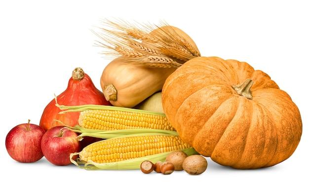 격리된 흰색 배경에 호박, 사과, 옥수수, 견과류, 밀 귀