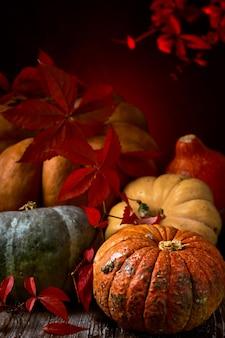 Тыквы выложены на старый стол и украшены ивовыми листьями, крупным планом осенние овощи